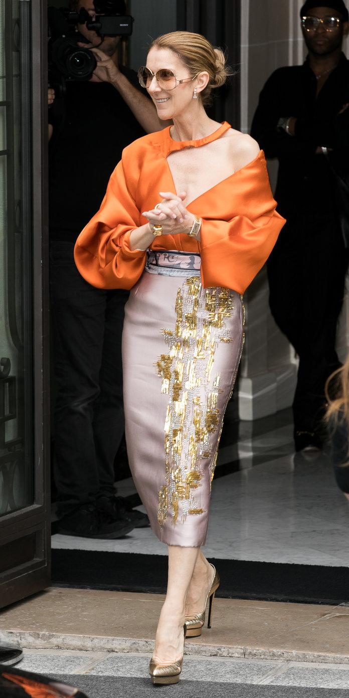 Style Evolution: Celine Dion Na Style Zake